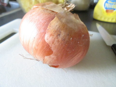Unpeeled Uncut Onion