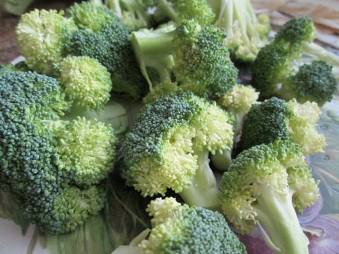 Broccoli Ready