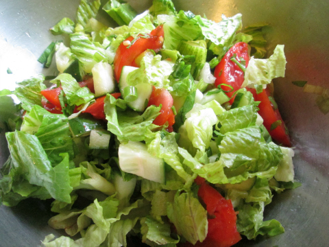 Fresh Organic Lettuce in Salad