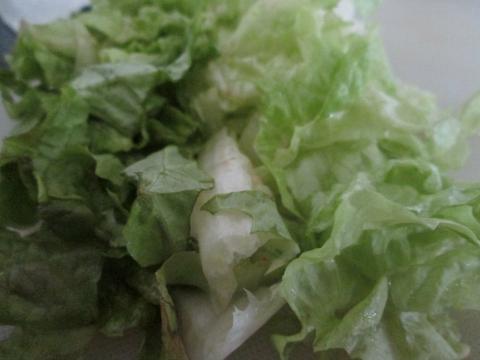 Fresh Sandwich Lettuce