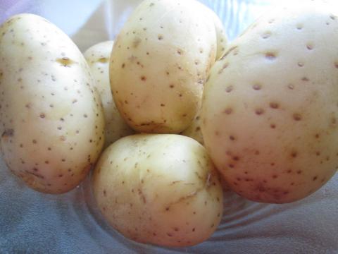 Potatoes For Garlic Chicken