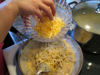 Grated Cheese and Sour Cream