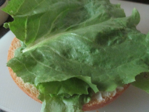 Lettuce and Sandwich Slice