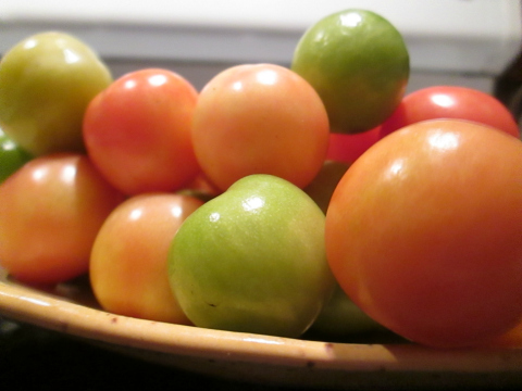 Cheery Cherry Tomatoes!